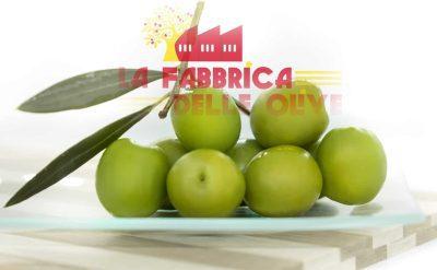 olive verdi siciliane al naturale g 500